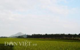 Bình minh trên núi mắng Trời ở Bình Định