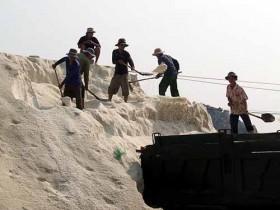 Chật vật vì muối rớt giá