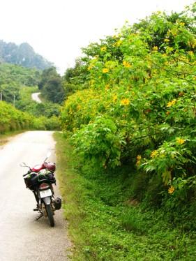 Hai manh ghep tu Sam Nua, Thuong Lao