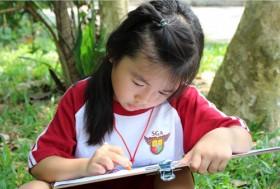 Khám phá trí thông minh vượt trội của trẻ.