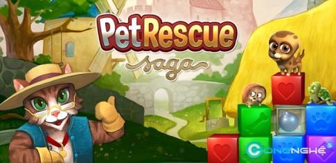 Pet Rescue Saga - Game nhẹ nhàng trên FaceBook