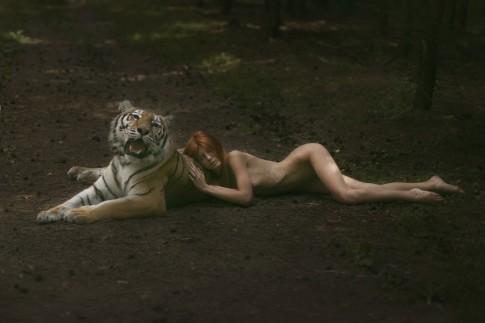Bộ ảnh nghệ thuật giữa người và động vật