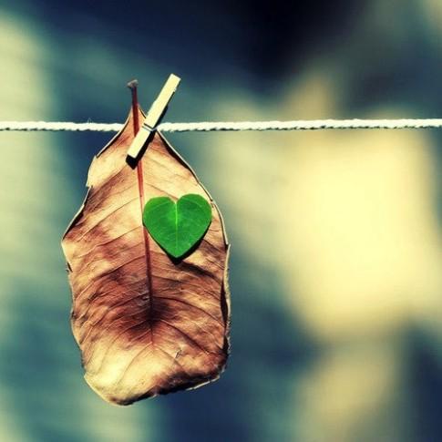 Đừng bao giờ ngã giá với yêu thương!