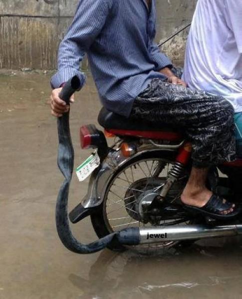 Giải phải chống ồn cho xe máy lvl báo đạo