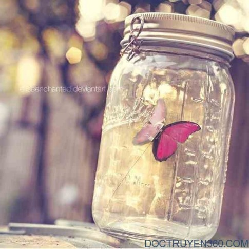 Không có tình yêu vĩnh cửu, nhưng có hạnh phúc vĩnh hằng...