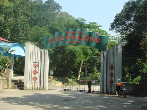 Kinh nghiem du lich rung Cuc Phuong