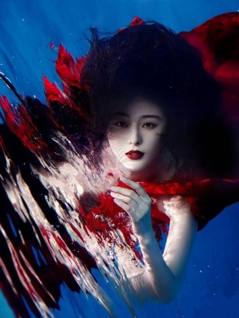 15 bức ảnh dưới nước có thể khiến bạn sững sờ