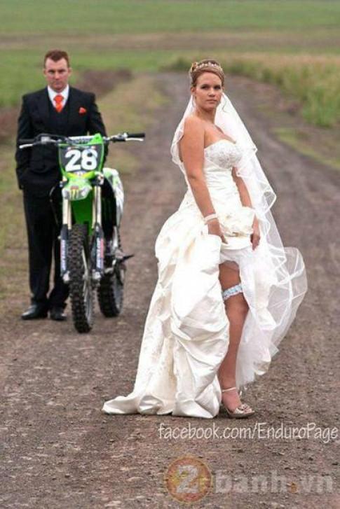 Cào cào ... đi vào ảnh cưới