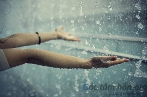 Câu chuyện một chiều mưa
