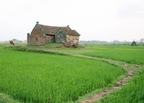 Đi thăm làng cổ Đường Lâm bằng xe đạp
