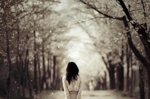 Đường về nhà là con đường xa nhất trong chuỗi những hành trình vô tận của một đời người...