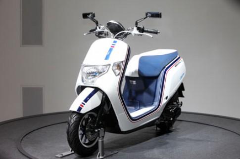 Honda Dunk - Xe tiện dụng đi trong thành phố