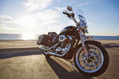 Mẫu Harley Davidson cho người nhỏ con