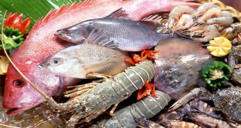 Ăn cá biển giúp chuyển tâm trạng từ buồn sang vui