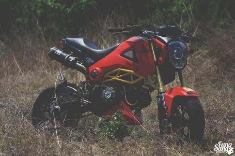 Chùm ảnh Honda MSX và người đẹp cá tính