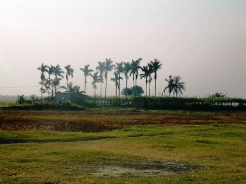 Đến Ninh Thuận thưởng thức món thit Dông của người Chăm
