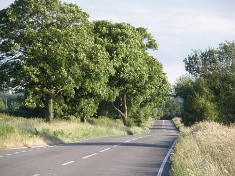 Những con đường đẹp như mơ cho dân chơi xe