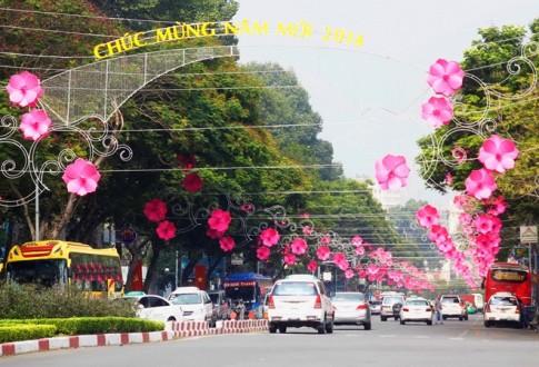 Sai Thanh ruc ro don tet Nham Ngo