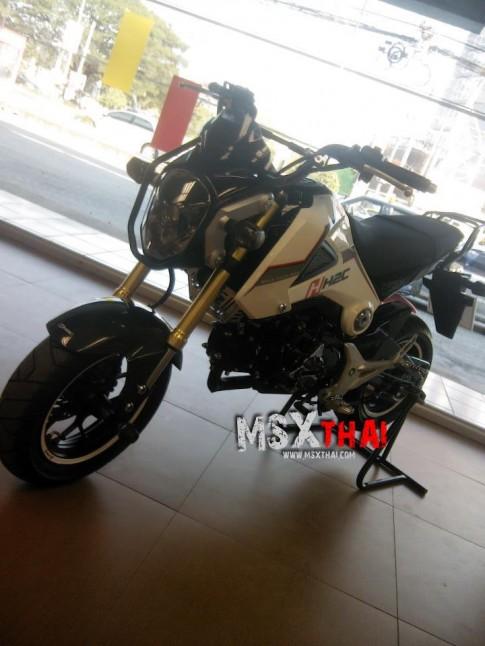 Honda MSX độ Cafe Racer với pô con sâu