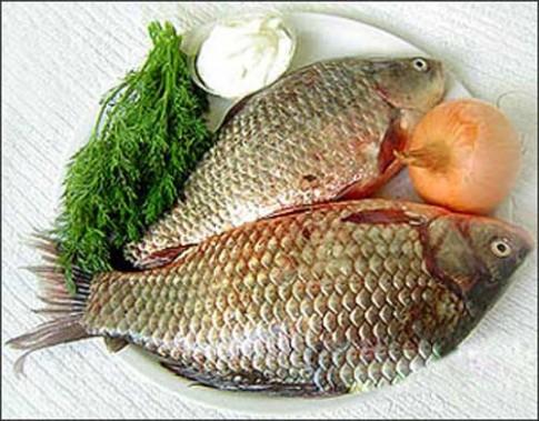 Nam giới tăng phong độ nhờ... cá