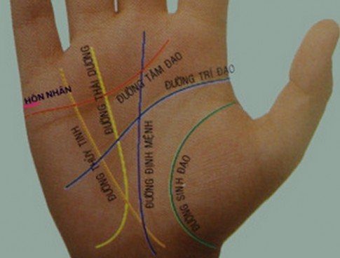 Đường chỉ tay tiết lộ chính xác tính cách và vận mệnh con người?