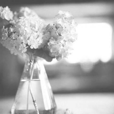 Cuộc sống đâu có gì là mãi mãi, tình yêu cũng đâu phải là vĩnh cửu...