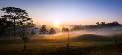 Đà Lạt huyền ảo trong sương sớm