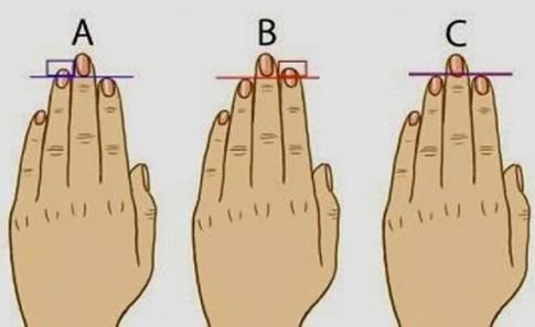 Đoán tính cách con người qua độ dài ngắn của ngón tay