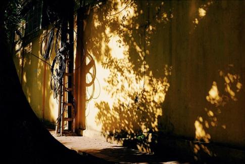 Hà Nội mùa hè bình yên qua ống kính Instagram