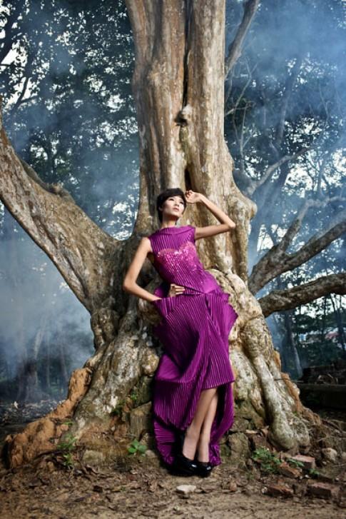 Hoàng Thùy trèo cây chụp ảnh