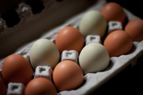 Mẹo nhỏ khi chế biến trứng và 3 cách làm món trứng bắc ngon mê