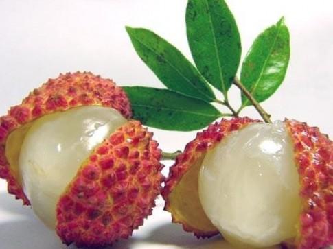 Phân biệt trái cây nóng - mát