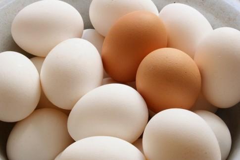 Rửa sạch trứng làm trứng nhiễm khuẩn.