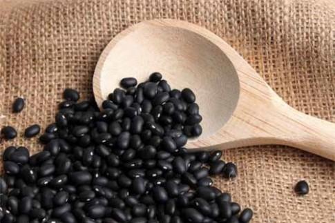Tác dụng chữa bệnh tuyệt vời của đậu đen