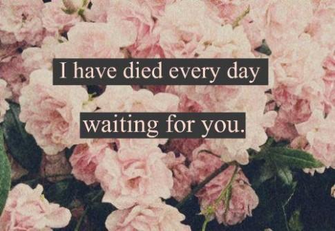 Tại sao anh không đợi em...?
