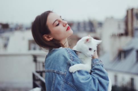 Tại sao phụ nữ lại thích nhận mình là mèo?