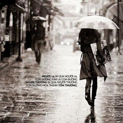 Tôi đã yêu một người như sinh mạng...