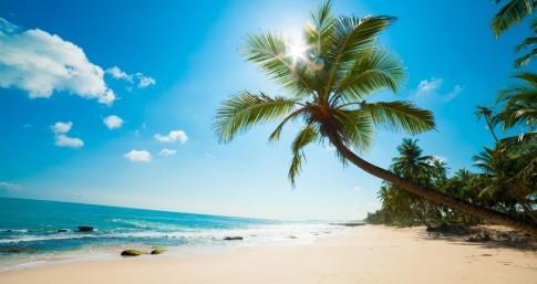 Top 6 bãi biển đẹp nhất Việt Nam theo đánh giá của nước ngoài