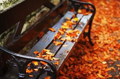 Từ lúc anh đi, mùa thu như buồn hơn...