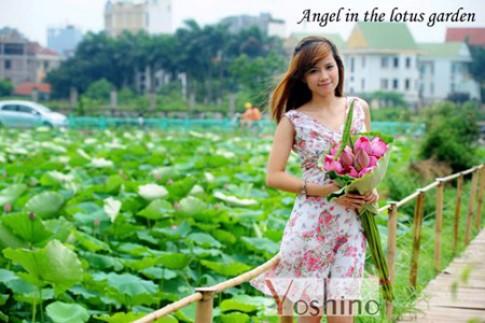 Bộ sưu tập Yoshino lấy ý tưởng từ hoa sen