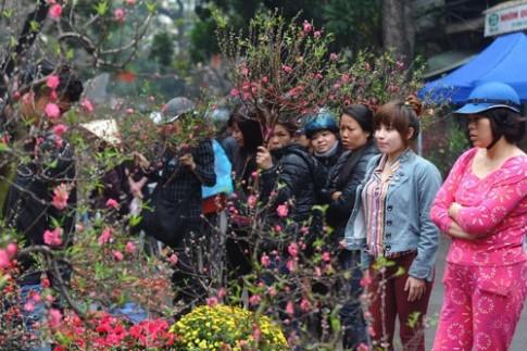 Hàng Lược, chợ hoa xuân nổi tiếng đất Hà thành
