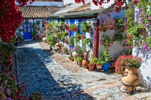 Rực rỡ lễ hội hoa bên hiên nhà ở Tây Ban Nha