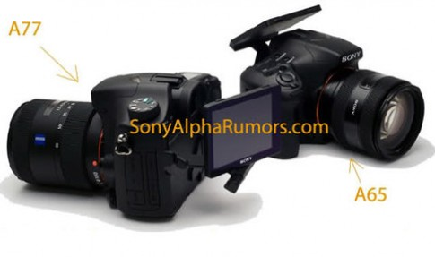 Ảnh Sony Alpha A77 và A65 xuất hiện