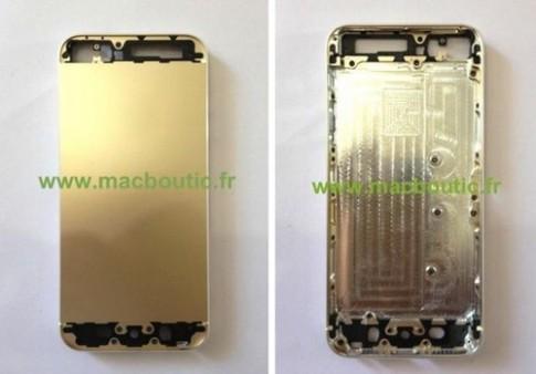 Ảnh thực tế vỏ iPhone 5S màu vàng