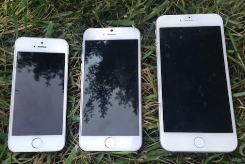 Apple đặt hàng kỷ lục, tới 80 triệu iPhone 6