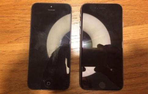 Chân dung iPhone SE trước lễ ra mắt