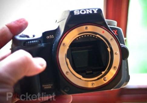 Dân Anh chuộng Sony hơn Nikon