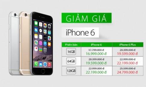 Giá iPhone 6, 6 Plus giảm sâu