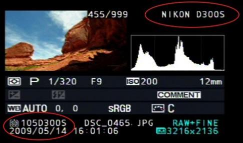 Hé lộ Nikon D300s