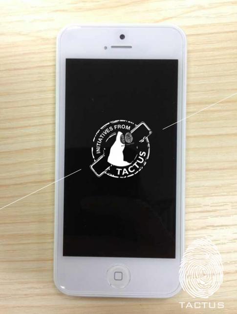 Hình ảnh thực tế đầu tiên về iPhone giá rẻ bản hoàn chỉnh